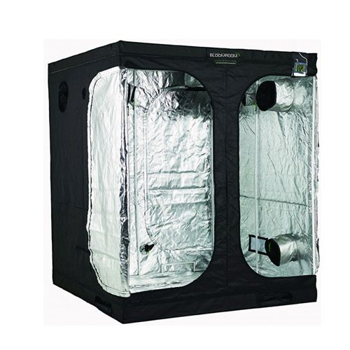 BloomRoom Tall Grow Tent 200 x 200 x 235cm  sc 1 st  The Hydro Store : tall tent - memphite.com