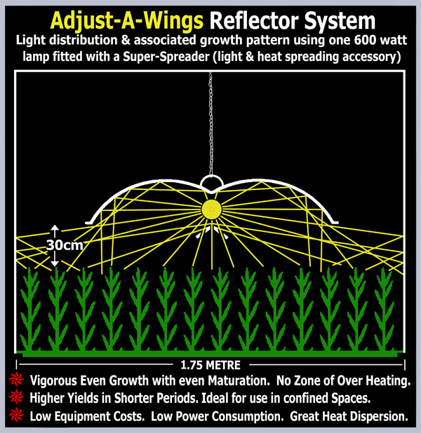 Diagram showing the light distribution under an Adjust-A-Wings Reflector system