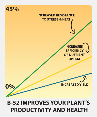 Advanced Nutrients yield chart